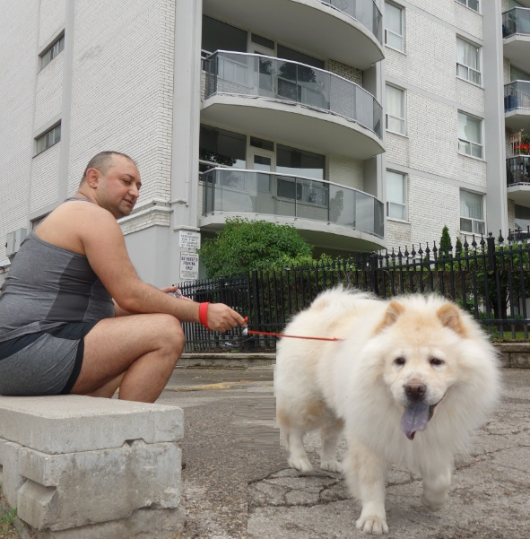 condo dog getting exercise