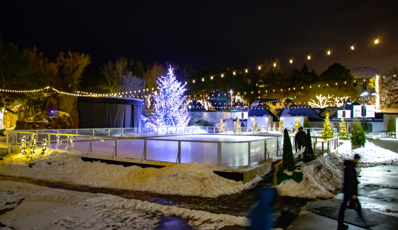 skating rink artifical ice Toronto ontario Place art exhibition 2018